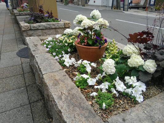 北野エリア花壇管理業務