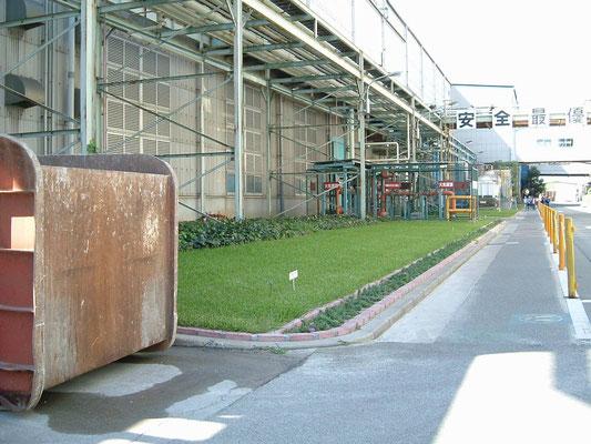 工場の芝生