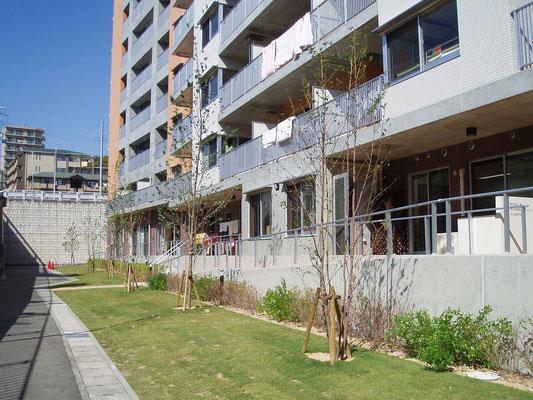 高齢者住宅の緑地