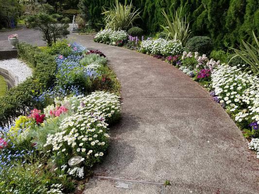 須磨離宮公園花の庭園須磨離宮公園花の庭園