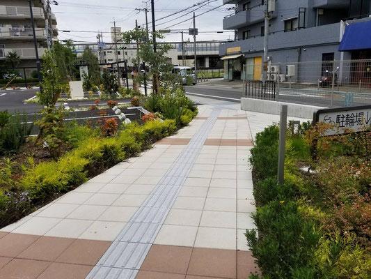 商業施設駐車場緑化