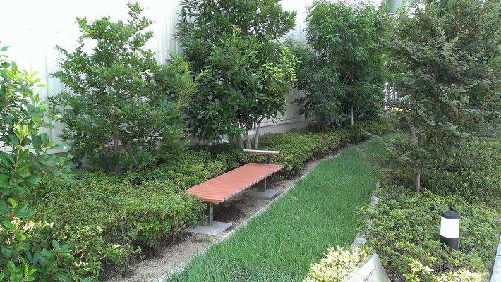 集合住宅の緑地