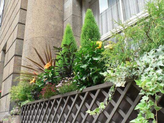 商業施設の花壇