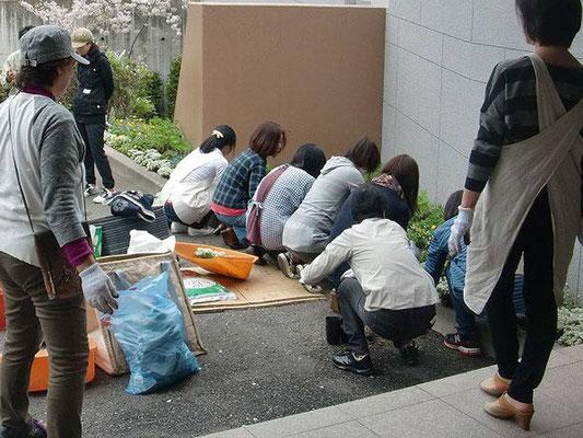 集合住宅園芸クラブ講習会