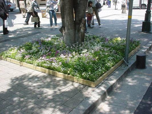 ガーデンショーでの緑化