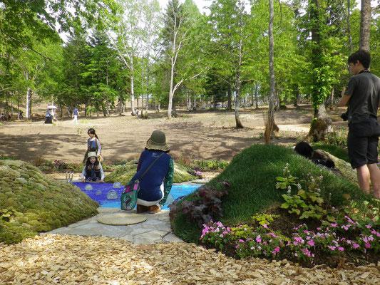 北海道ガーデンショー2015大雪入賞「山宴」