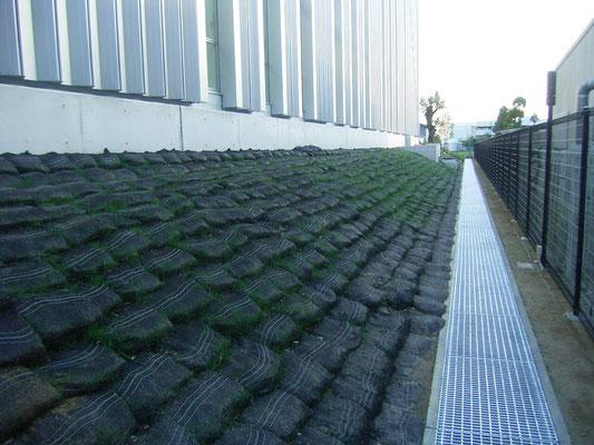 工場の法面緑化