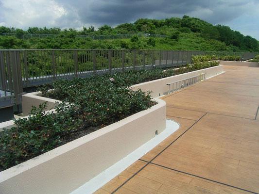 病院の屋上緑化