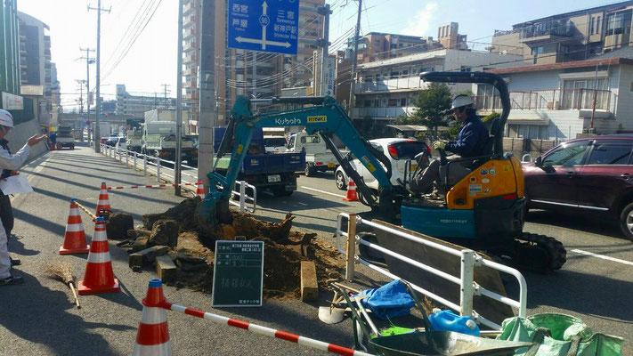 道路拡張等による街路樹抜根