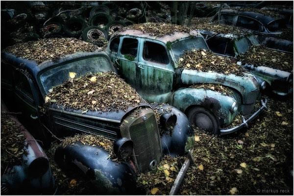 SCHÖNHEIT DES ZERFALLS - Autofriedhof Gürbetal, Schweiz