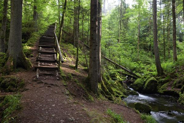 In der Ravennaschlucht im Schwarzwald