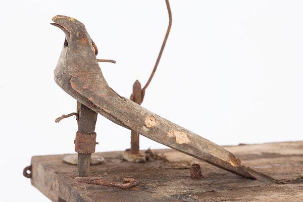 Kuckucksuhr Vogel Nahaufnahme vor der Freilegung