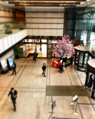 品川 御殿山 桜装花
