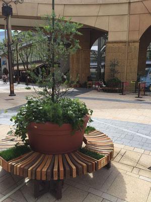 サークルベンチ デザイン 植栽
