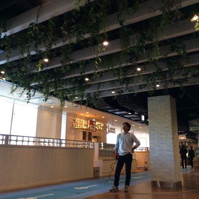 商業施設 グリーン植栽
