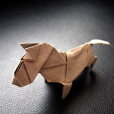 Tanaka-san a Bull Terrier