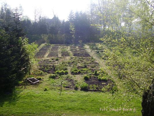 2010  Neuanlegen des Kräutergartens...