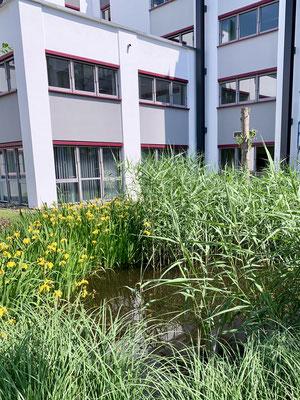 Schöne Büros in Cottbus Aussenbereich Q48