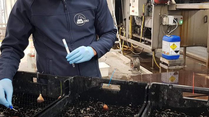 ATP Meting - voor reiniging kratten