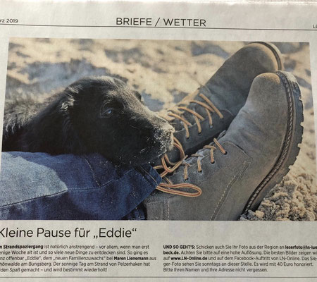 Eddie ist berühmt