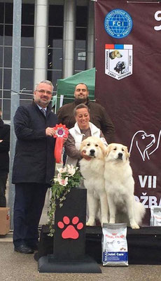 Escuda & Essi  - Best in Show Brace #1