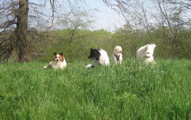 Bina, Karo, Lucie und Caatje