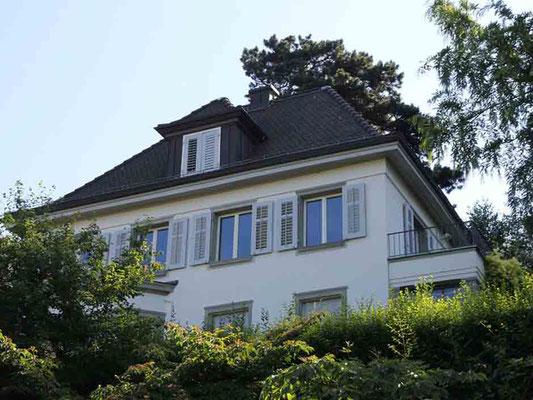 Einfamilienhaus Hadlaubstrasse, Zürich
