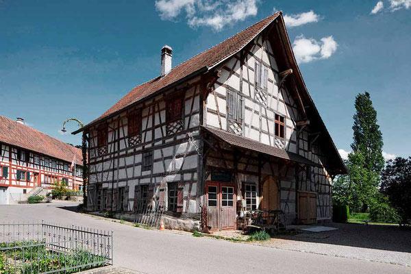 Trotte Hirschen, Stammheim