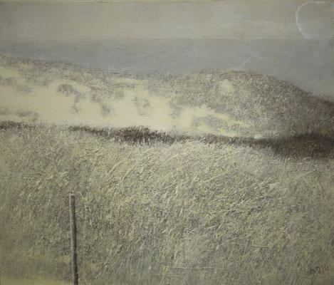 Юрий Первушин.       Zeeland. Domburg. № 6.     2014 г.    Холст, акрил.    60х70 см.