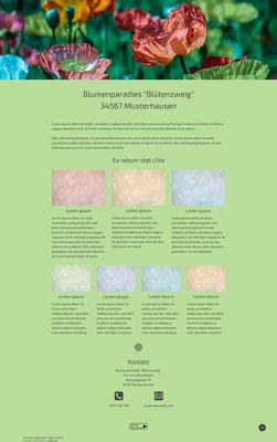"""Musterwebseite Design """"Image"""" mit individuellem Banner / Hintergrundfarbe"""
