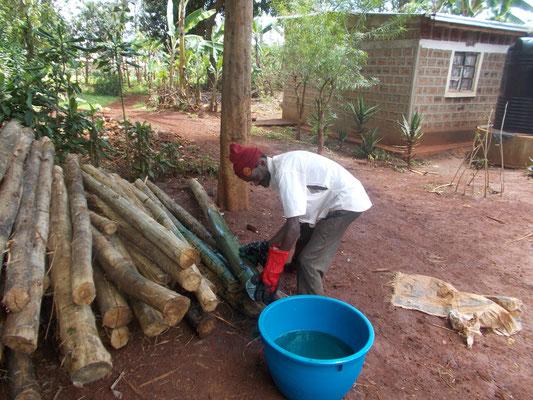 Ein fleißiger Helfer beim aufbringen des Holzschutzmittels...