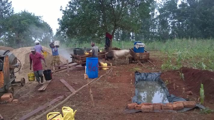 Erdloch ausgraben und als Wasservorrat nutzen...