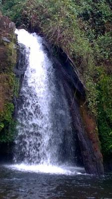 Ein kleiner Wasserfall im Urwald...