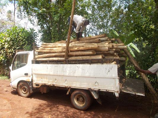 Der kleine Truck mit 150 Pfosten, vorne fehlt Luft, wird alles überbewertet...