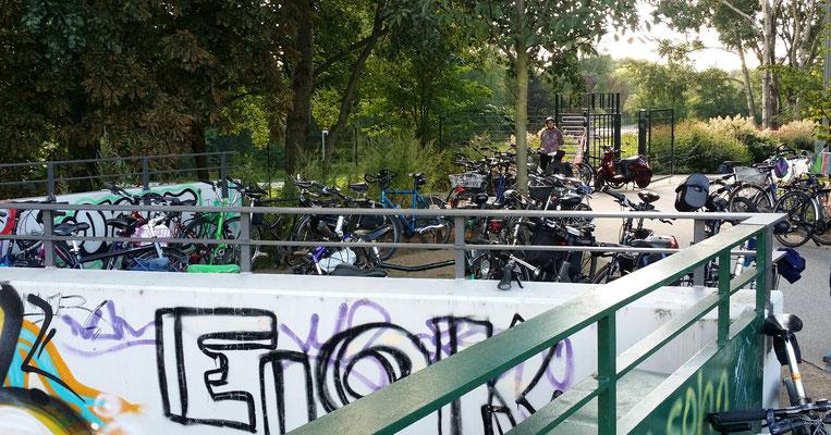 Kurzer Halt an der Brackstraßenbrücke (Inselpark)