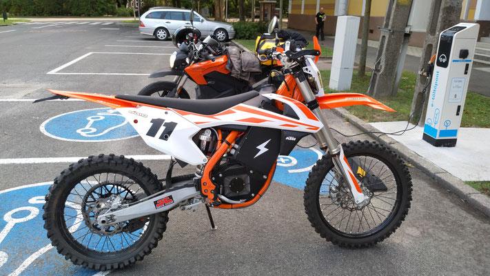 E-Mopeds unter sich