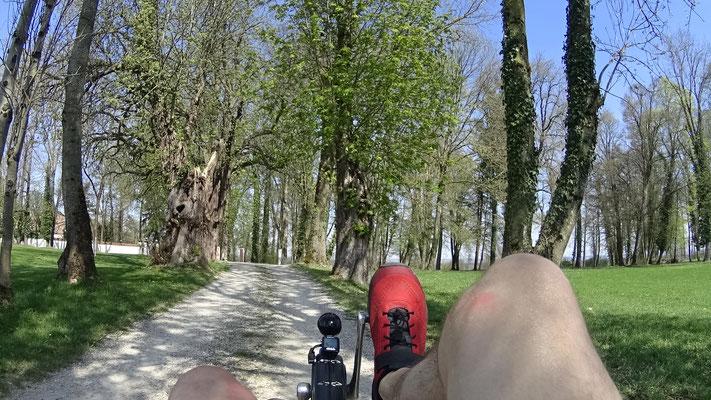 Radeln bei perektem Frühlingswetter
