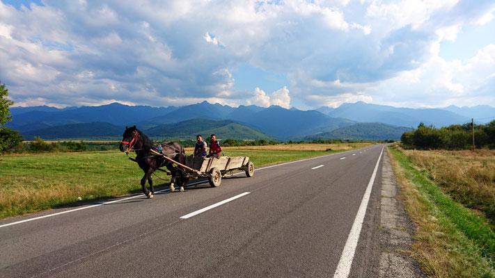 Pferdewagen vor Transfagarasan