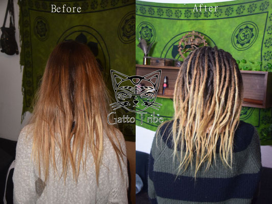 Dreaderstellung, neue Dreads in Berlin 041 (66 Dreads ohne Extensions)