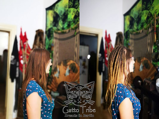 Dreaderstellung, neue Dreads in Berlin 048 ( 48 Dreads mit Extensions)