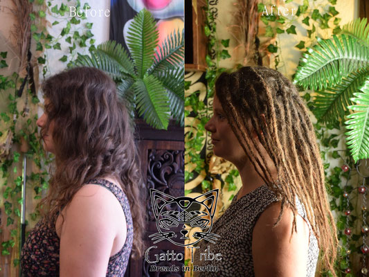 Dreaderstellung, neue Dreads in Berlin 038 ( 48 Dreads mit Extensions)