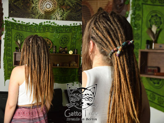 Dreaderstellung, neue Dreads in Berlin 040 ( 43 Dreads mit Extensions)