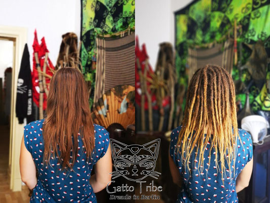 Dreaderstellung, neue Dreads in Berlin 047 ( 48 Dreads mit Extensions)