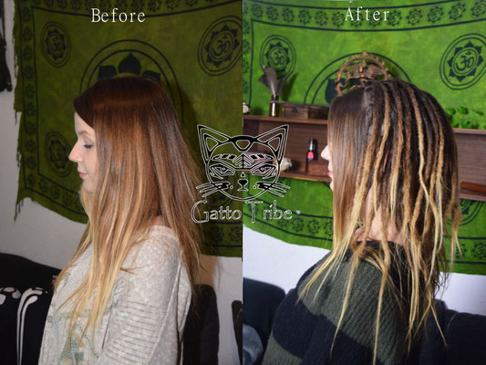 Dreaderstellung, neue Dreads in Berlin 042 (66 Dreads ohne Extensions)