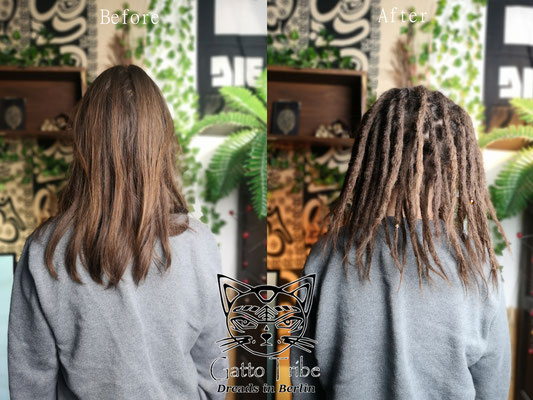 Dreaderstellung, neue Dreads in Berlin 059 ( 46 Dreads ohne Extensions)