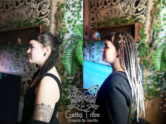 Dreaderstellung, neue Dreads in Berlin 057 ( 38 Dreads mit Extensions)