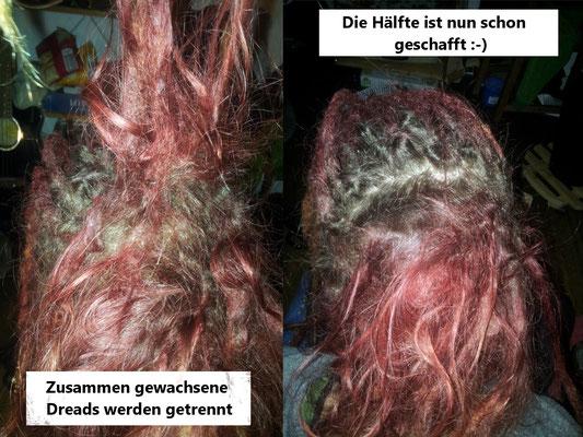 Dreadpflege Ansatzpflege in Berlin 009