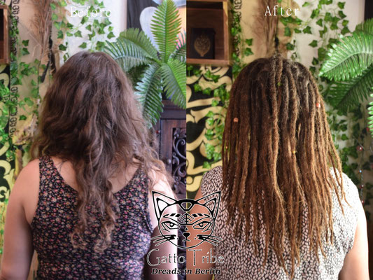 Dreaderstellung, neue Dreads in Berlin 037 (48 Dreads mit Extensions)