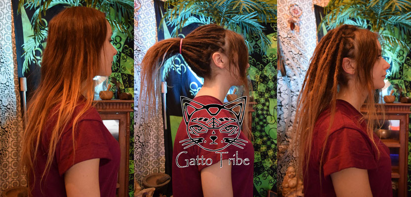 Dreaderstellung, neue Dreads in Berlin 008 (59 Dreads mit Extensions)
