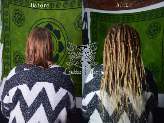 Dreaderstellung, neue Dreads in Berlin 039 (50 Dreads mit Extensions)